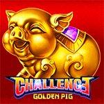 Challenge?Golden Pig