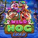Wild Hog Luau