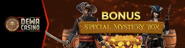 NEW BONUS SPECIAL MYSTERY BOX